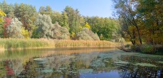 河风景。 图库摄影
