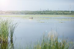 河风景,钓鱼在小船的渔夫 图库摄影