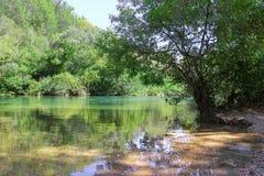 河风景-采廷娜在克罗地亚 免版税库存图片