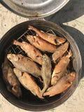 河鱼被烹调在利益 热的熏制的栖息处在一个开放抽烟的设备在 免版税库存照片