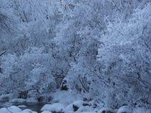 河,冬天,西伯利亚 库存照片