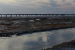 河,在世界的最长的桥梁的沼泽地由杭州海湾 库存图片