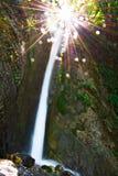 河,自然,迷离水,瀑布,树,事假, pollino,卡拉布里亚,意大利 免版税库存照片