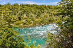 河, Alerces国家公园,阿根廷 库存图片