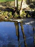 河, sunloit,与大岩石小和 库存照片