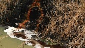 河水污染和污秽从化工业工厂污水,平稳 影视素材