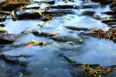 河细节 图库摄影