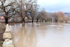 河破裂了它的银行 库存照片