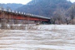 河破裂了它的银行 免版税库存图片
