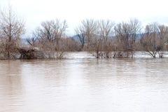 河破裂了它的银行 库存图片