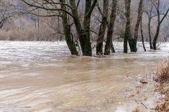 河破裂了它的银行 免版税库存照片