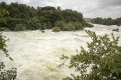 河洪水 免版税库存图片