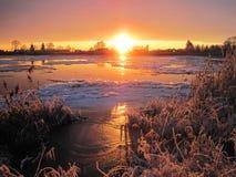 河Atmata,家和多雪的树在日落颜色,立陶宛 库存照片