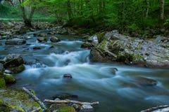 河Bijeka,达鲁瓦尔 免版税库存图片