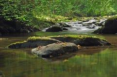 河ceiriog平静的场面 库存照片