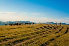 河Charyn, Turgen,哈萨克斯坦- 21,07,2013 免版税库存图片