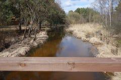 河Czarna在波兰 库存照片