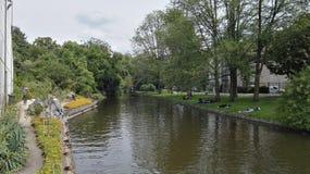 河hortus阿姆斯特丹都市自然 免版税库存图片