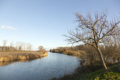 河Linge在莱尔丹和Geldermalsen之间的荷兰 库存图片
