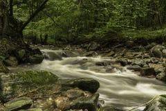 河Pakra,克罗地亚 图库摄影