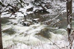 河Prut的风雨如磐的水 免版税库存照片