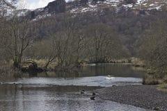 河Rothay, Cumbria 图库摄影