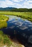 河saranac海岸线 库存图片