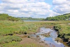 河Teifi,威尔士 库存照片
