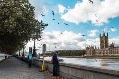 河Thamesin伦敦,英国 库存照片