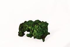 绿沸铜水晶 库存图片