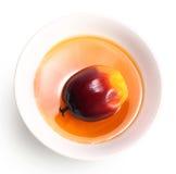 油棕榈树果子和烹调用油 免版税图库摄影