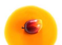 油棕榈树果子和烹调用油 免版税库存照片
