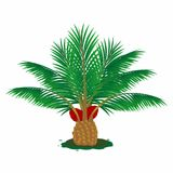 油棕榈树树在平的样式例证结出果实 库存例证