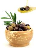 油橄榄橄榄 库存照片
