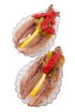 油橄榄沙丁鱼 库存照片