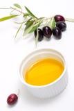 油橄榄色橄榄纯枝杈 免版税库存照片