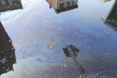 油污染的街道 免版税库存照片