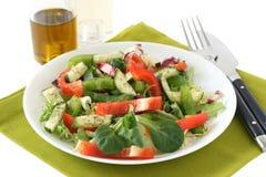 油沙拉蔬菜 免版税库存图片