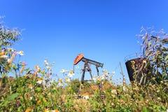 油泵杰克(抽油杆射线) 免版税库存照片