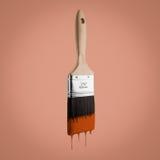 油漆刷用滴下刺毛的棕色颜色装载了, 免版税库存照片