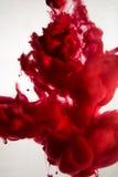 油漆在水,红色,五颜六色,蓝色,绿色,黄色中 库存图片