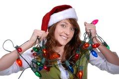 油漆工s圣诞老人结构树 库存图片