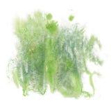 油漆飞溅颜色墨水水彩孤立冲程绿色泼溅物水彩aquarel刷子 免版税库存图片