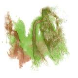 油漆飞溅颜色墨水水彩孤立冲程绿色褐色泼溅物水彩aquarel刷子 库存照片