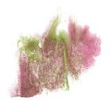 油漆飞溅颜色墨水水彩桃红色绿色隔绝了冲程泼溅物水彩aquarel刷子 免版税库存照片