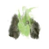 油漆飞溅颜色黑色墨水的绿色水彩被隔绝的冲程泼溅物水彩aquarel刷子 免版税图库摄影
