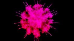 油漆,在黑背景隔绝的五颜六色的粉末爆炸烟花  3d动画作为一个五颜六色的摘要 向量例证