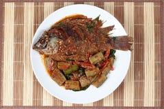 油炸罗非鱼鱼冠上了辣油煎的茄子 免版税库存照片