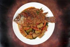 油炸罗非鱼鱼冠上了辣油煎的茄子 库存图片