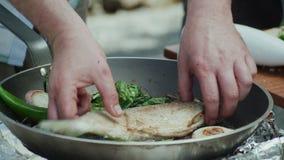 油煎在一个平底锅的奥赫里德湖棕色troutÂ用红萝卜、唐莴苣叶子和葱 股票视频